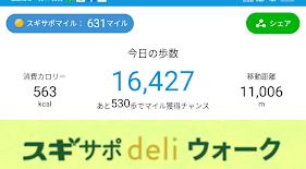 16,427歩の記録